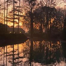 Weerspiegeling van het bos in het Frankenven tijdens de avondschemering.