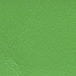 AVP160 LimePunch