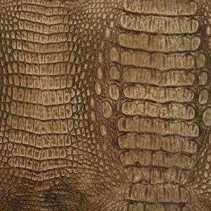Wild Croc Bronze