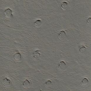 Ost Grey