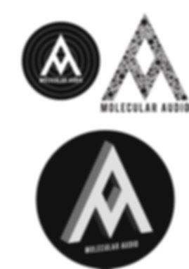 audio logo.jpg
