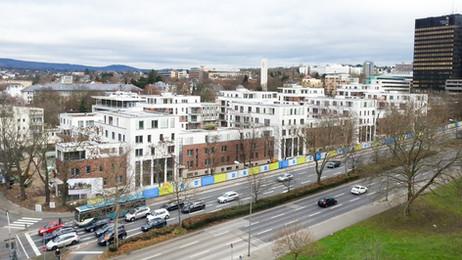 Dantestrasse | Wiesbaden