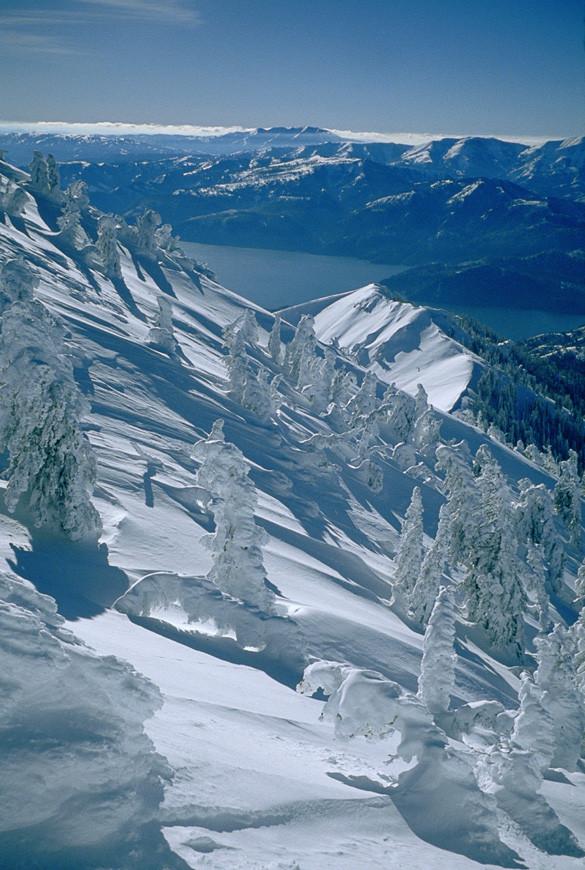 Palisades Wilderness Study Area | Tom Turiano photo