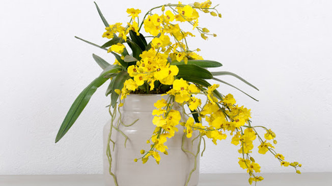 Artificial Yellow Orchid in Ceramic Pot