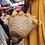 Thumbnail: Penrose Tan Washed Woven Basket with Orange Rabbit Pompoms and Leather Handles