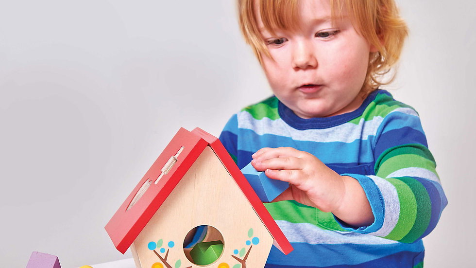 Le Toy Van Birdhouse Shape Sorter