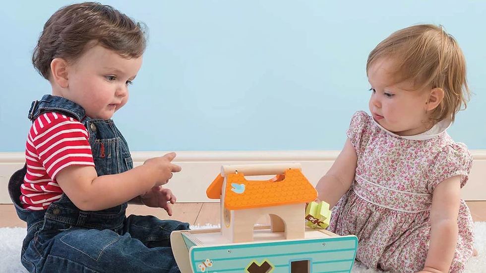Le Toy Van Petit Ark