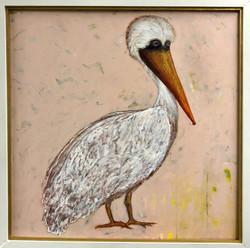Louisiana Brown Pelican