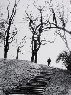 Vincent Curly 1956