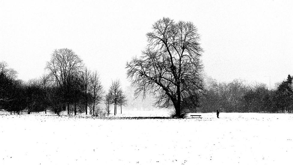 BOUDENNE Thomas -  Parc
