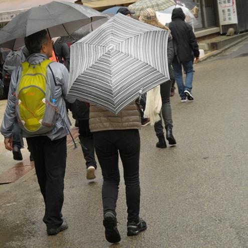 Anni-Noel PINSON - Les Parapluies 2
