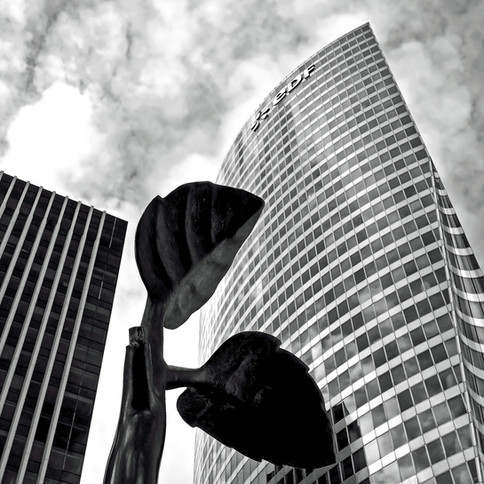 Didier GUYOT - Fantasme d'Architectes 1