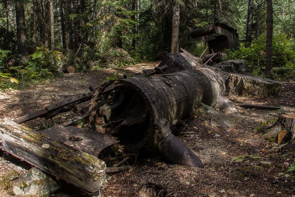 GESSAT Gérard - Abandonnée dans le Bois