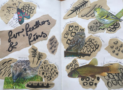 Patterns from nature exemplar