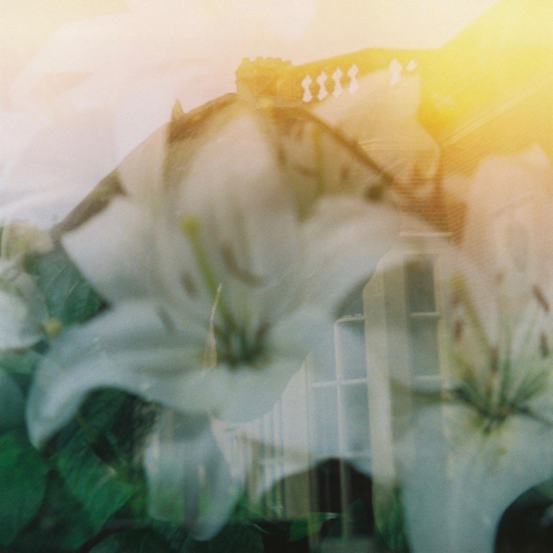Glyndebourne Flowers