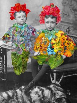 Festival Boys