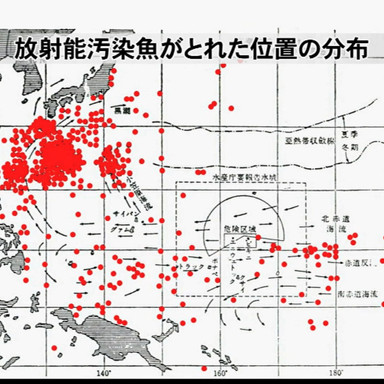 日本近海も放射能汚染