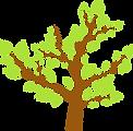 Feuilles d'arbre