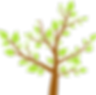 Foglie d'albero