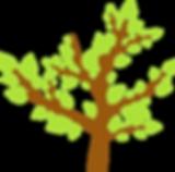 Image d'un arbre