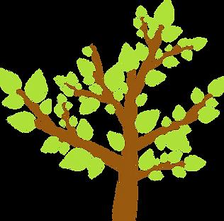 Facilitati - Fratii Jderi Utopia Verde