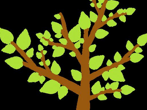 Volle protest achter Guvelingenkerkske: De ene boom is de andere niet