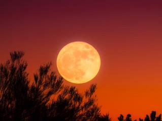 満ち足りぬ月(満月に寄せて)