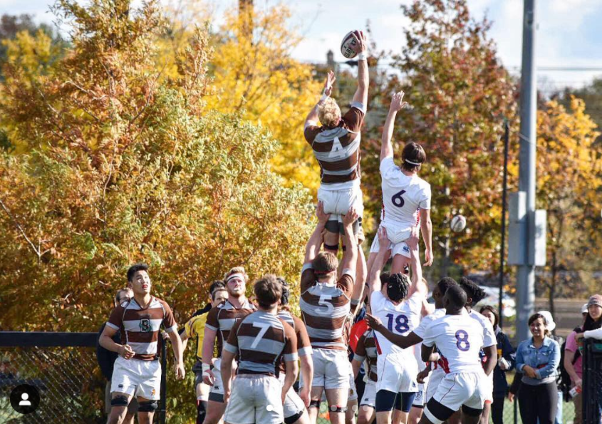 Line out.PNG