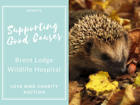 Supporting Brent Lodge Wildlife Hospital