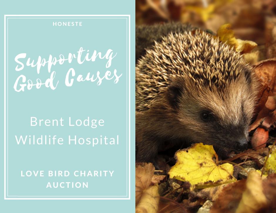 Honeste Charity Auction