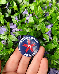 gardening wildflower power.jpg