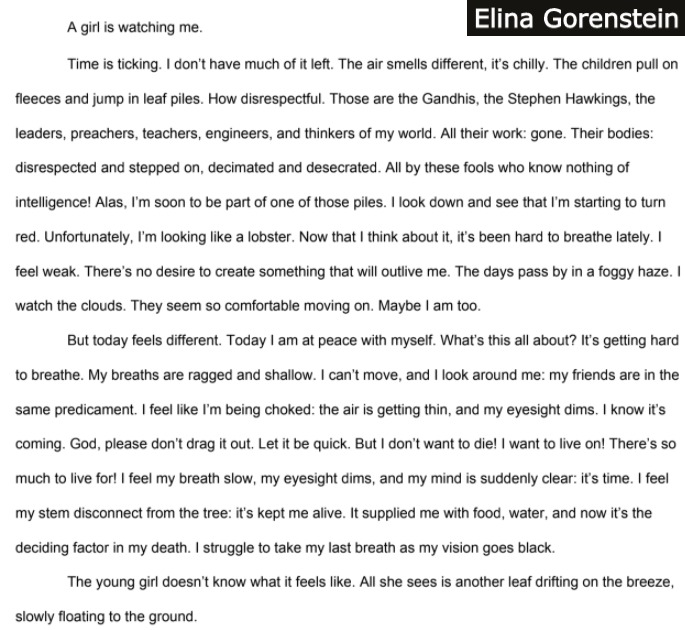 Flash Fiction from Elina Gorenstein, West Lafayette