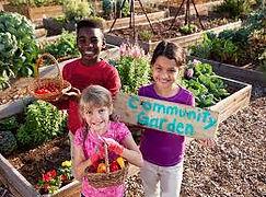 community garden.jfif