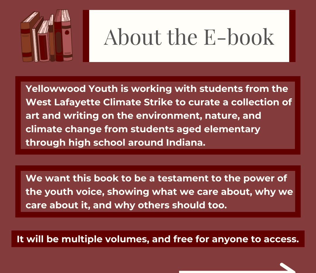 Ebook Project Post Slide 2.png