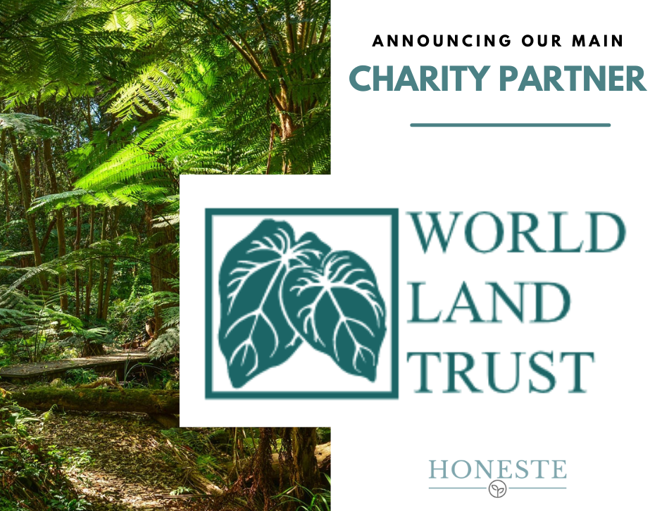 Honeste New Charity Partnership - 10% of Profits Go To Charity