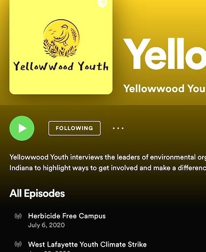 Spotify Screenshot: Yellowwood Youth Podcast
