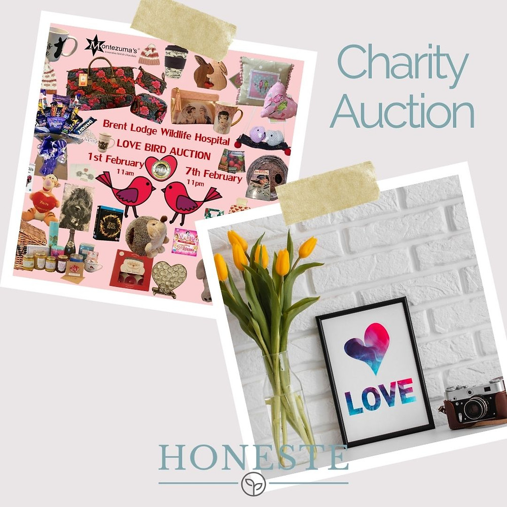 Brent Lodge Wildlife Hospital Charity Auction