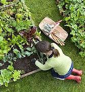 organic garden.jfif