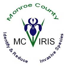 MCIRIS Logo