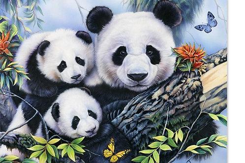 famille de pandas