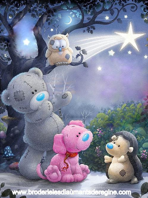 les oursons et l'étoile filante