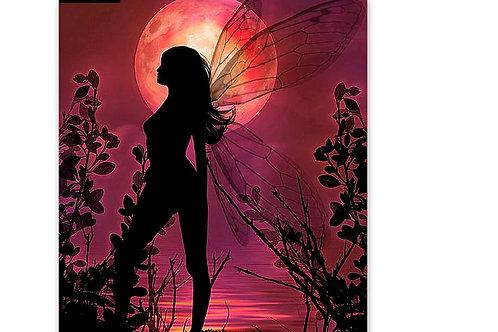la fée papillon sous la lune