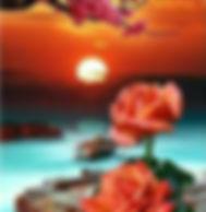 Fleurs et coucher de soleil 50 x 40 cm.j