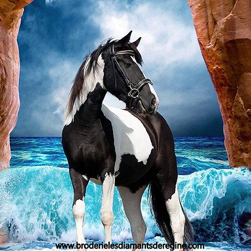 le cheval et la mer