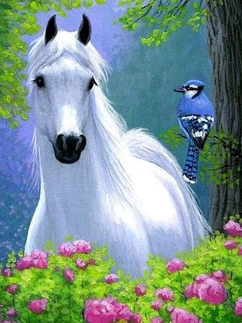 cheval blanc et oiseau