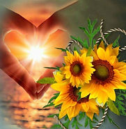 coeur tournesols soleil couchant.jpg