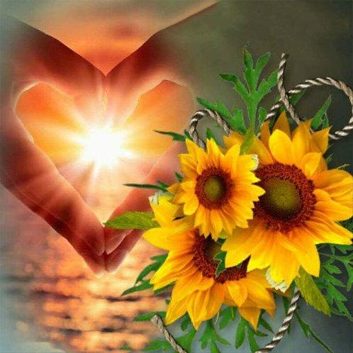 Coucher de soleil cœur tournesols