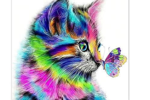 chat coloré et papillon