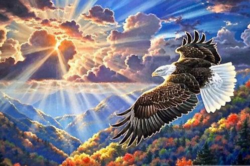 le vol de l'aigle