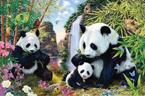 la grand famille des pandas